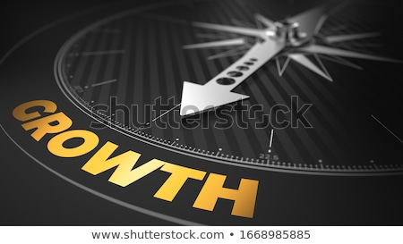 3d Compass With Needle Pointing The Text Growth Foto stock © Tashatuvango