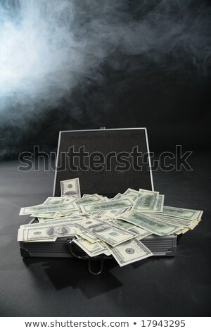 Suitcase with dollars against smoke Stock photo © Paha_L