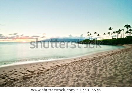 Hawaii · naplemente · drámai · néz · óceán · tengerpart - stock fotó © eyeidea