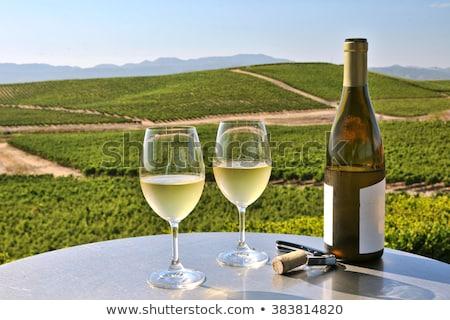 долины виноградник фотография мнение вниз сельскохозяйственный Сток-фото © oliverjw