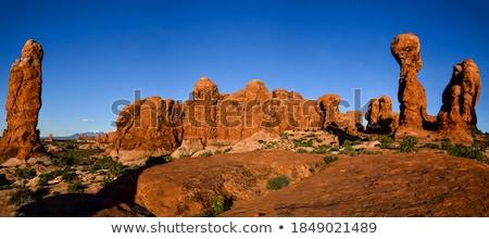 canyon · top · Australië · bomen - stockfoto © iTobi