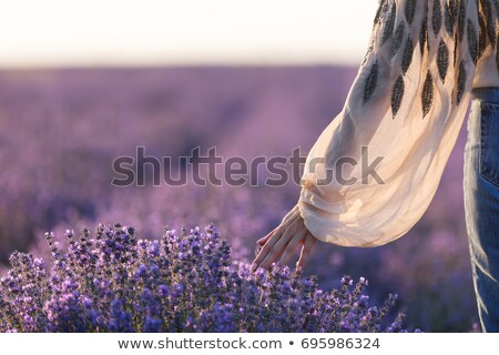 女性 ラベンダー畑 美しい ブロンド 座って ダウン ストックフォト © Anna_Om