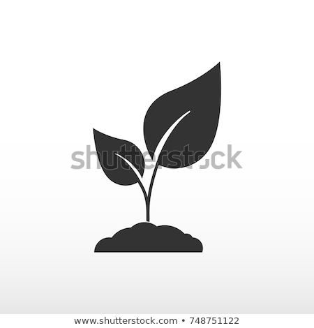 ikon · bitki · doğa · vektör - stok fotoğraf © zzve