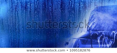 щетка · автомойку · автомобиль · мыть · стиральные - Сток-фото © cheyennezj