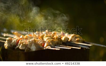 Kebab processo cottura aprire il fuoco esterna succosa Foto d'archivio © ryhor