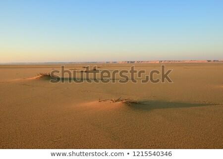砂丘 明るい オレンジ 日没 ラ 自然 ストックフォト © jkraft5