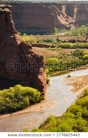 Arizona ruines canyon bomen gebouwen gemeenschap Stockfoto © meinzahn