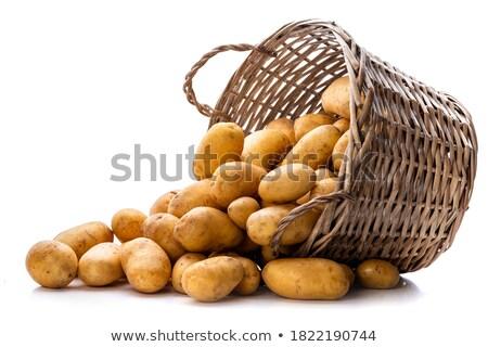 Hazelnoten mand geïsoleerd witte voedsel Stockfoto © natika