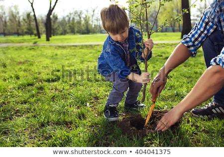 мало мальчика отец природы рук детей Сток-фото © koca777
