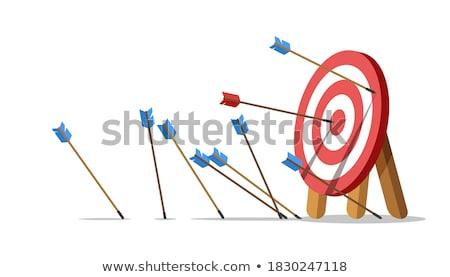 training   arrows hit in red mark target stock photo © tashatuvango