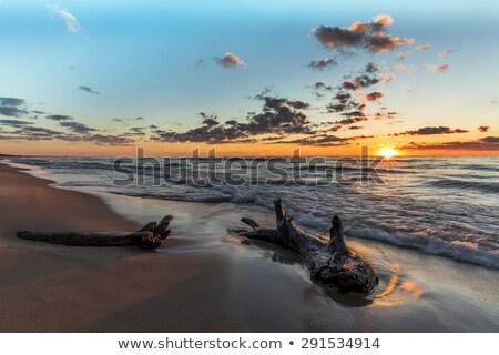 Shoreline Lake Huron Stock photo © pictureguy