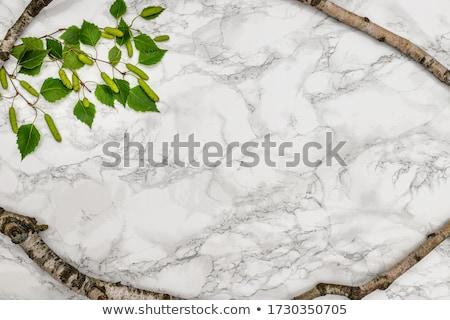 Naturales piedra superficie arenisca fondo Foto stock © Ximinez