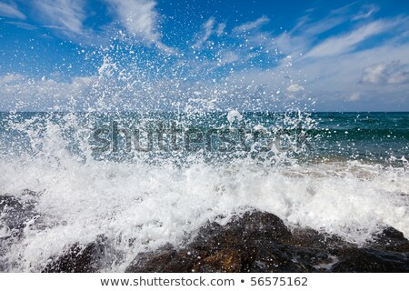 waves breaking on rocks of tropical coast Stock photo © Mikko