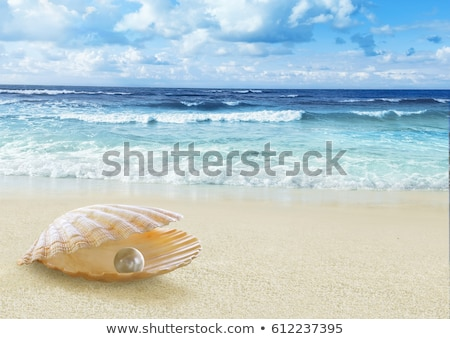 Pearl In Open Shell Stock photo © Lightsource