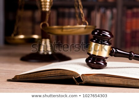 a gavel and a law book   usa stock photo © zerbor