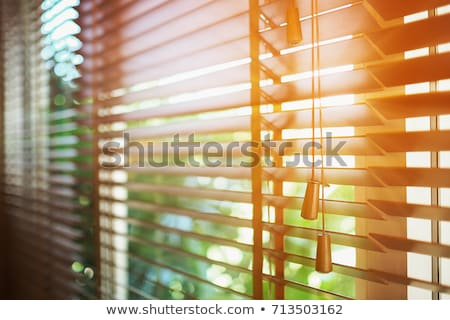 window closed with blind Stock photo © taviphoto