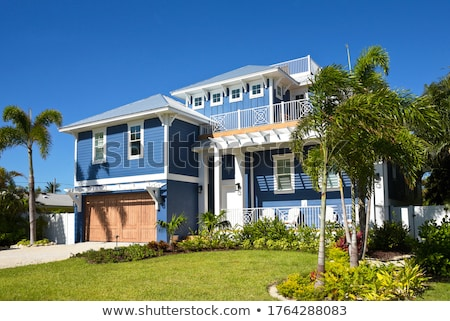 New Home with Palm Trees Stock photo © feverpitch