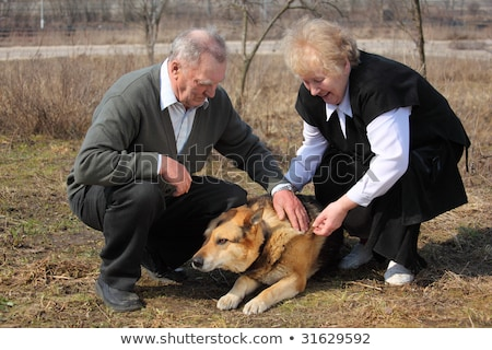 Elderly pair caresses a dog Stock photo © Paha_L