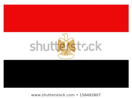 camel with flag Egypt Stock photo © adrenalina