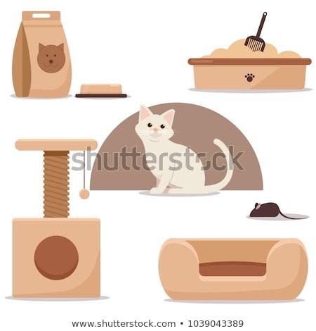 maison · chat · illustration · maison · nature · portrait - photo stock © ConceptCafe