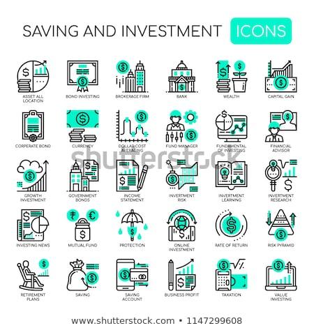 Tőke védelem ikon üzlet szürke gomb Stock fotó © WaD