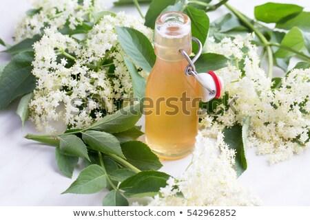 elder lemonade with ice stock photo © mady70
