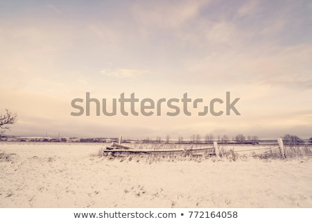 A beautiful landscape with a fence Stock photo © bluering
