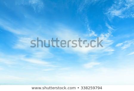 Blauwe hemel witte wolken voorjaar landschap wolk Stockfoto © alinamd