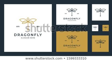 Szimmetrikus dísz szitakötő arany sebességváltó kulcsok Stock fotó © blackmoon979