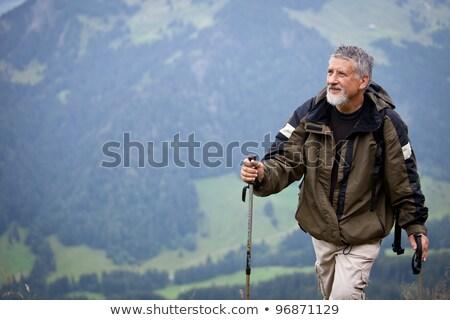 ativo · senior · caminhadas · alto · montanhas · alpes - foto stock © lightpoet