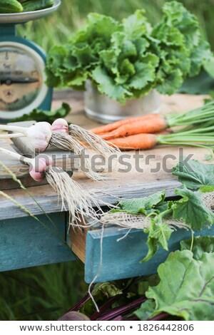 Friss zöldségek piac öreg mérleg eladva Ecuador Stock fotó © julianpetersphotos