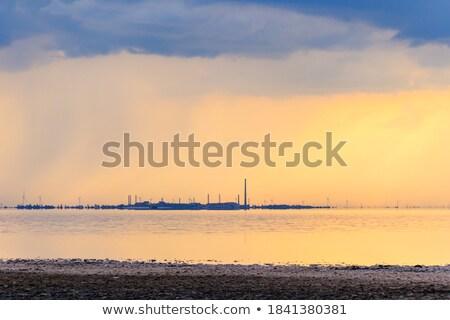 smokestack pipe factory on the shore  Stock photo © OleksandrO