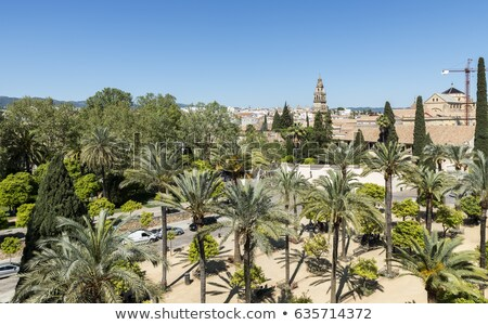 モスク · 塔 · アンダルシア · スペイン · 建物 · 教会 - ストックフォト © compuinfoto