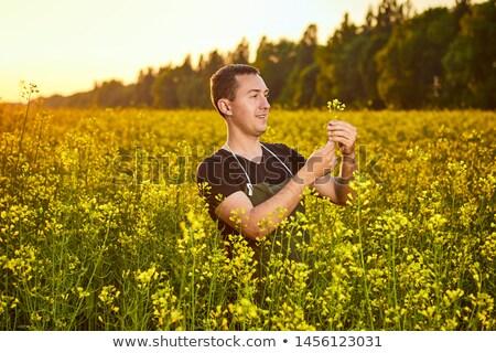 Farmer agronomist holding rapeseed canola flower Stock photo © stevanovicigor