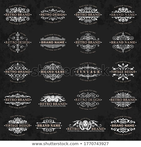 Foto stock: Large Collection Of Ornate Calligraphic Design Elements On A Chalkboard Background - Vector Set