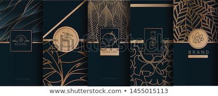Luxury ornamental gold label - vector design stock photo © blue-pen