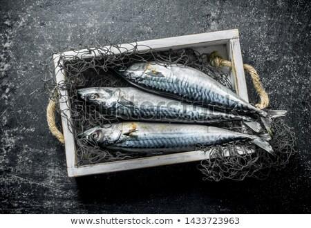 Nyers makréla darabok citrus hagyma egészséges Stock fotó © Digifoodstock