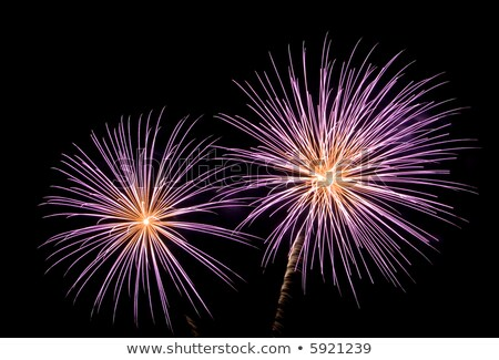 Firework on night background, anniversary bursting fireworks. V Stock photo © Andrei_