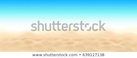 Tropical Ocean Beach Sand Vector. Beauty Sandy Texture Illustration Stock photo © pikepicture