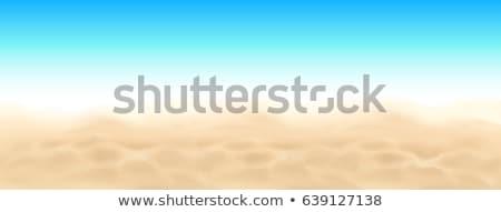 tropical ocean beach sand vector beauty sandy texture illustration stock photo © pikepicture