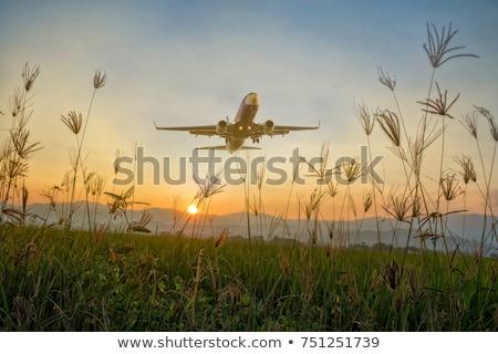 Colorful landscape with passenger airplane Stock photo © denbelitsky