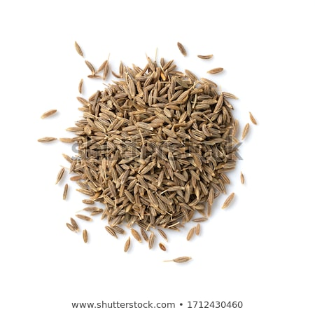 pile of caraway seeds Stock photo © Digifoodstock