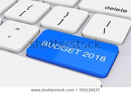 Kék költségvetést készít numerikus billentyűzet billentyűzet 3d illusztráció fémes Stock fotó © tashatuvango