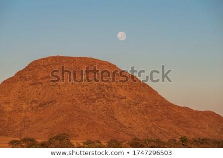 volle · maan · berg · boven · bomen · heldere · hemel - stockfoto © vapi