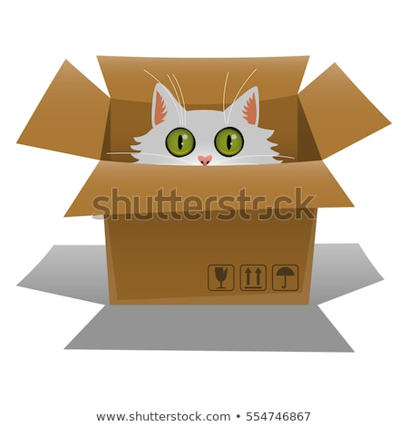 Box with kittens. Cats in cardboard box. Vector illustration Stock photo © popaukropa