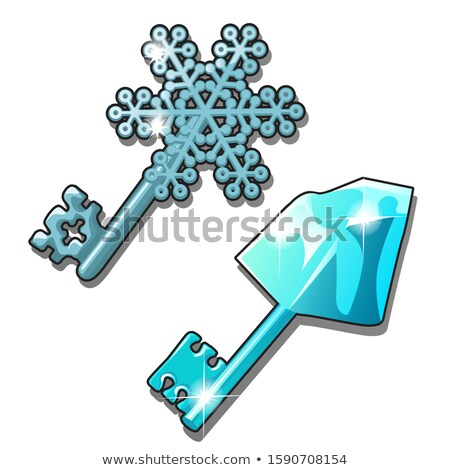 Set of vintage keys isolated on a white background. Cartoon vector close-up illustration. stock photo © Lady-Luck