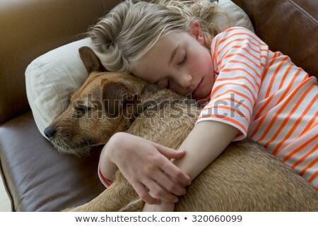 Jong meisje hond dutje tijd illustratie huis Stockfoto © bluering