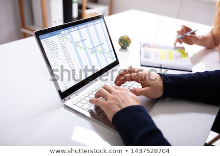 Two Businesspeople Analyzing Gantt Chart On Computer Stock photo © AndreyPopov