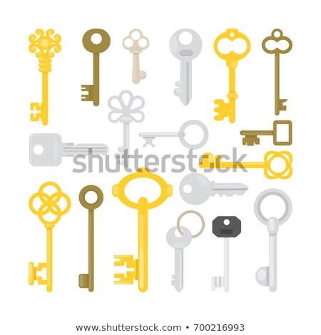 chave · porta · castelo · desenho · animado · vintage · isolado - foto stock © lady-luck