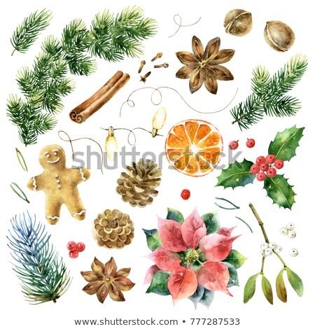 Navidad guirnalda grande colección blanco gradiente Foto stock © cammep